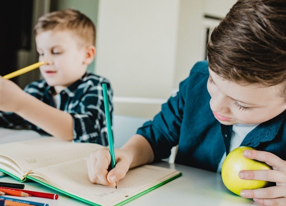 Educationally-Focused Afterschool Nanny Needed for Two Elementary-Age Boys in Pasadena!! $30-$40/hr DOE!!