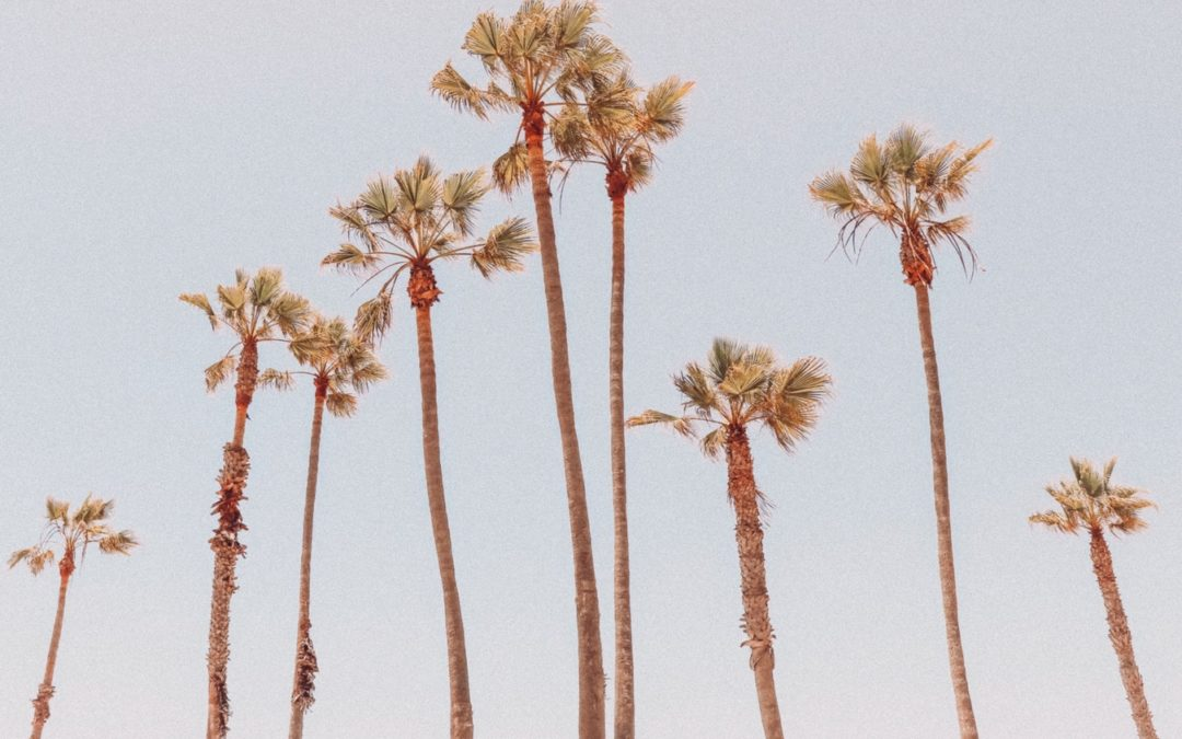 Smart, Helpful, & Engaging Nanny Needed Full-Time M-F in Santa Monica for Almost 1-Year-Old Baby Girl!