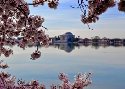 TOP-NOTCH Career Nanny Needed in Arlington, VA (Just Outside D.C.) for Family with 3 Boys!